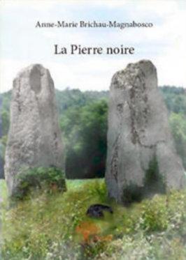 Eryl : La Pierre Noire Les origines