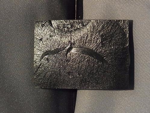 ピカイア板状化石レプリカ①