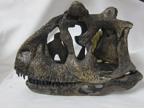 カルノタウルス頭骨1/4サイズレプリカ