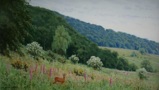 Lythe Valley Roe 25 x 42 cm.jpg