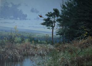 Rising Pheasants