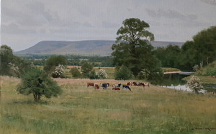 Pendle from Mitton 14 x 20 ins.jpg
