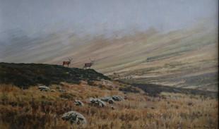 Red Deer Stags 20 x 35 cm.jpg