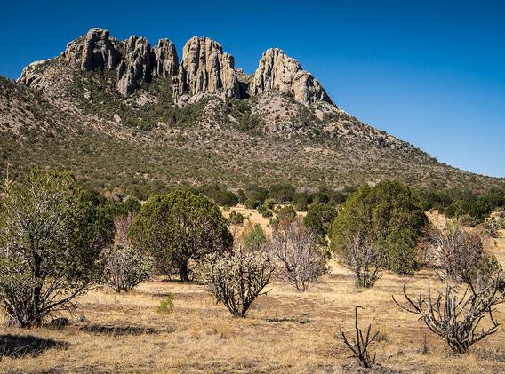 Davis Mountains