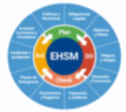 EHSM Imagen.png