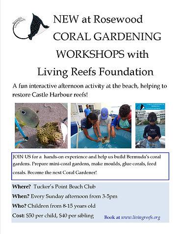 Coral Gardening Workshops.jpg