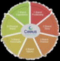 strategic-brand-development-process_edit
