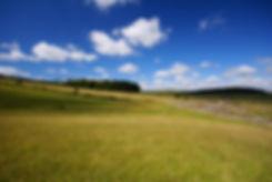 Bellever Moor and Meadows, Dartmoor - St