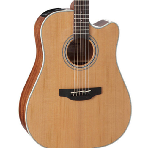 Takamine GD20CE (List Price $659.99)