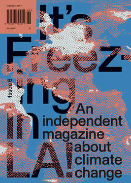 Issue 6 Greenwash