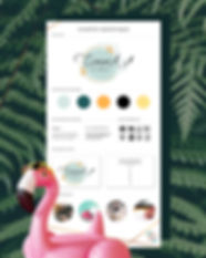 Pack-logo-charte-graphique.jpg