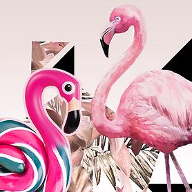 AMStudioCreatif-agency-Branding-Packs.png