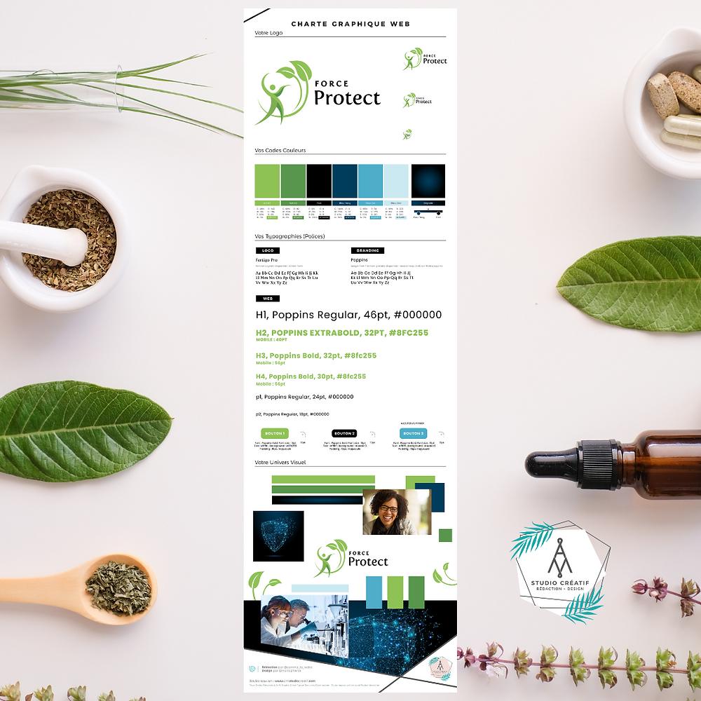 Exemple du branding web e-commerce