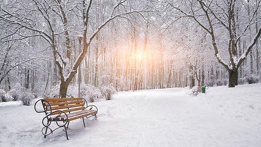 雪柄.jpg