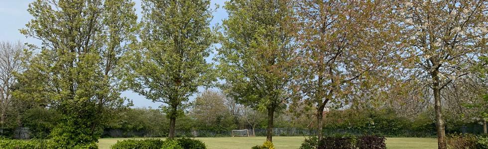 Our nature garden