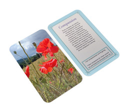r5 (1)poppies