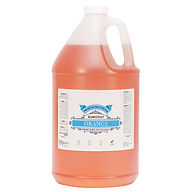 Base Coat Orange 1 Gallon.jpg