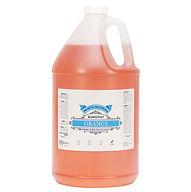 Base Coat Orange 1 Gallon.jpg
