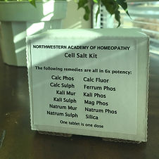 cell salt kit pic_edited.jpg