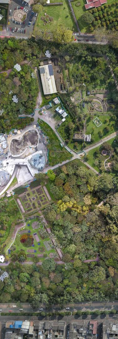 Jardin Botanico final.jpg