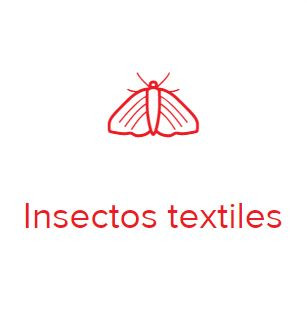 insectos textiles.JPG