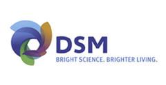 21 DSM.jpg
