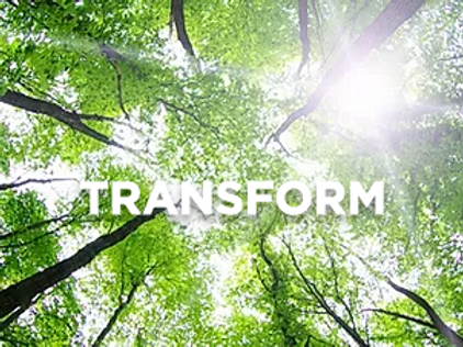 Transformation Guided Meditation
