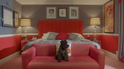 Posh Dogs - Five Star Hotel