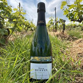 champagne_extra_brut_dans_les_vignes_700