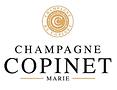 copinet logo.png
