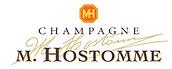 hostomme logo.png