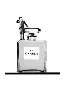 CHARLIE BOTTLE