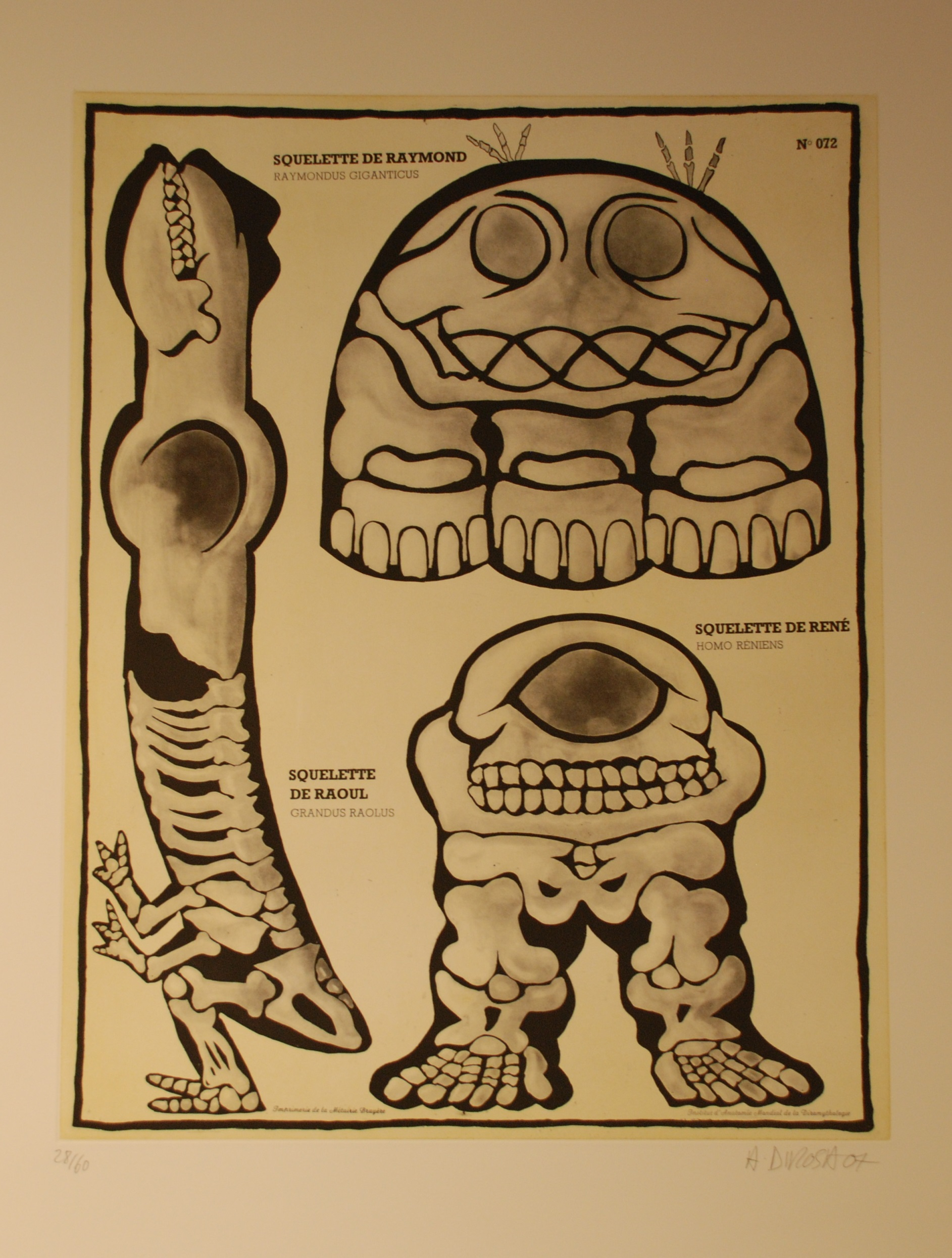 Squelette de Raymond