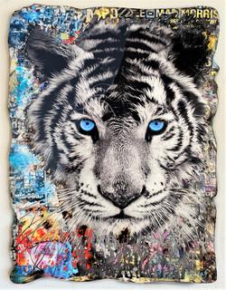 BLUE EYES TIGER 130X90CM