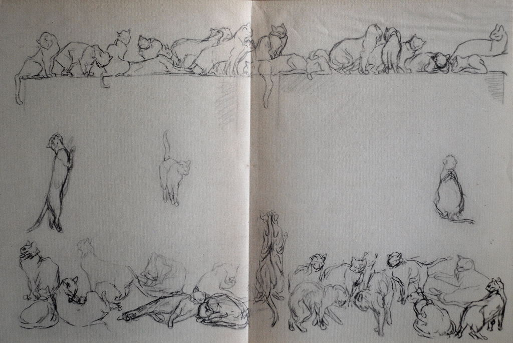 Chats et autres bêtes