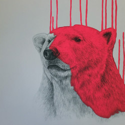 Hey There, Polar Bear - Neon Pink