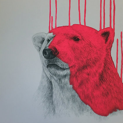 Hey There, Polar Bear (Neon Pink)