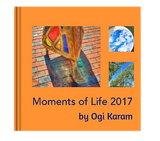 Moments of Life 2017.png