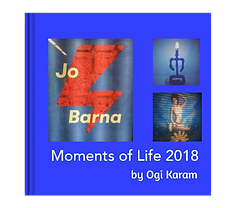 Moments of Life 2018.png