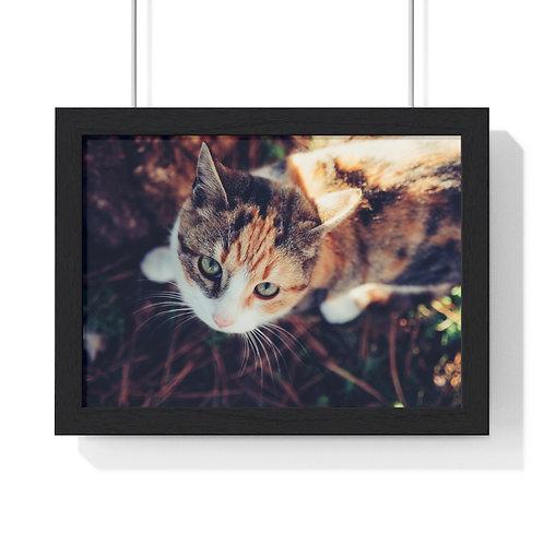 """""""Cat"""" Premium Framed Horizontal Poster"""