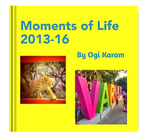Moments of Life 2013.png