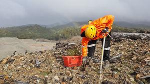 Mine site rehabilitation