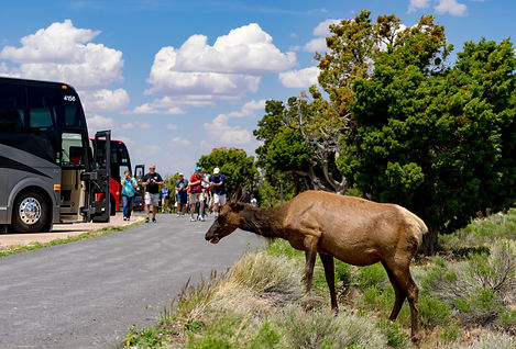 custom rv trips to U.S. Natioinal Parks