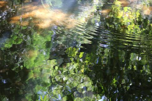 River Jewels