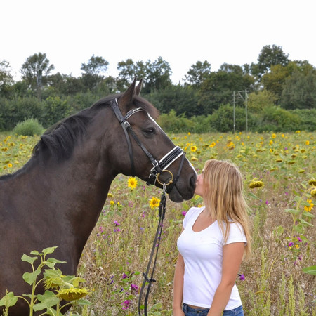 Thema: eigenes Pferd