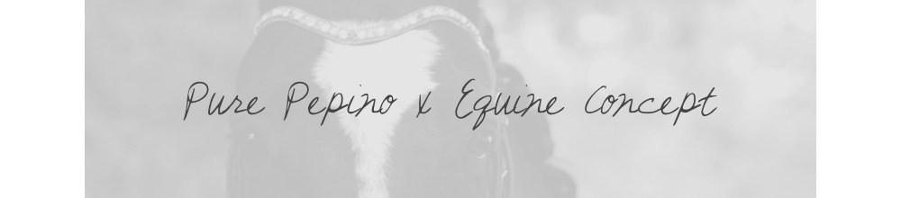 purepepino-x-equine-concept
