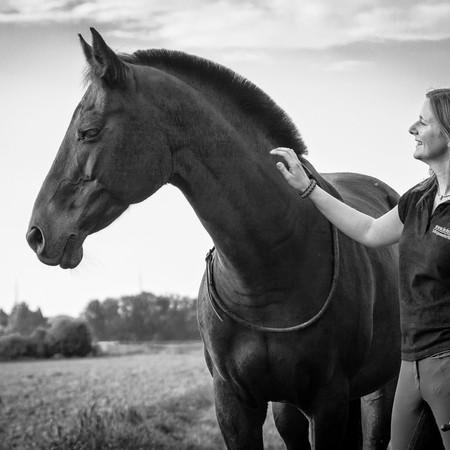 GASTBEITRAG: NATURAL HORSEMANSHIP – MEHR ALS NUR SEILCHEN SCHWINGEN