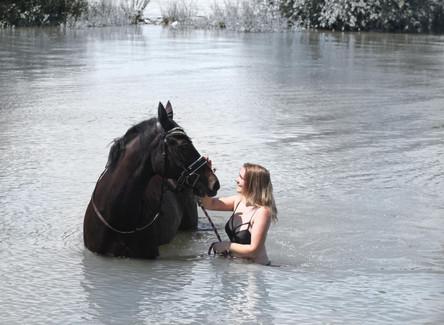 5 Tipps zum Baden mit Pferden