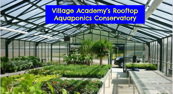 VA Rooftop Conservatory.png