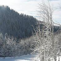 photo hiver.jpg